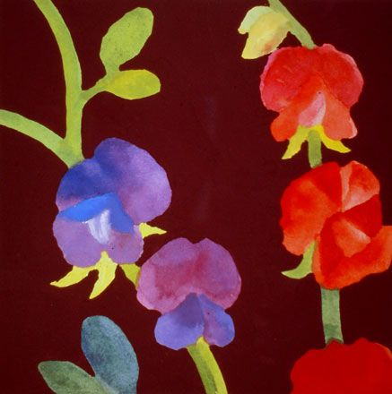 Red and Purple Sweet Peas - Nerys Johnson