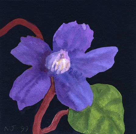 Purple Clematis with Leaf and Crimson Stalk - Nerys Johnson