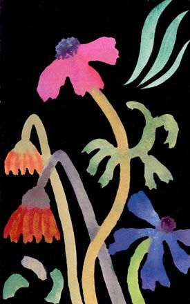 Faded Anemones and Gerberas with Three Green Lines - Nerys Johnson